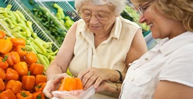 Aging Life Services Program